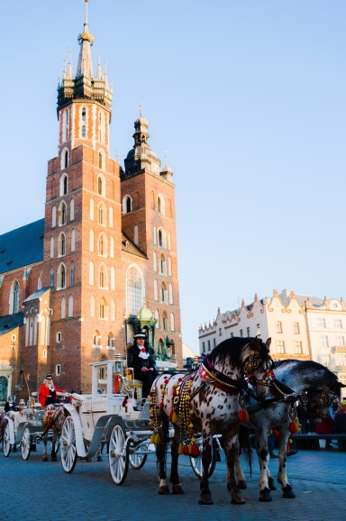 Carriage rides by  St. Mary's basilica